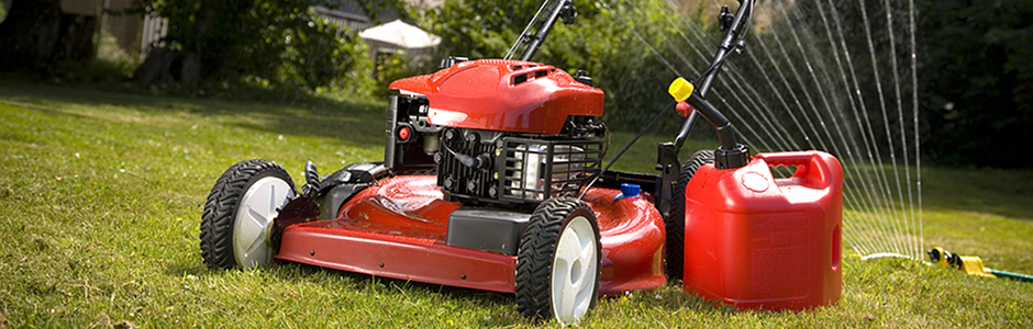 Mower Winter Sale