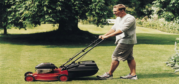 Mower Guide